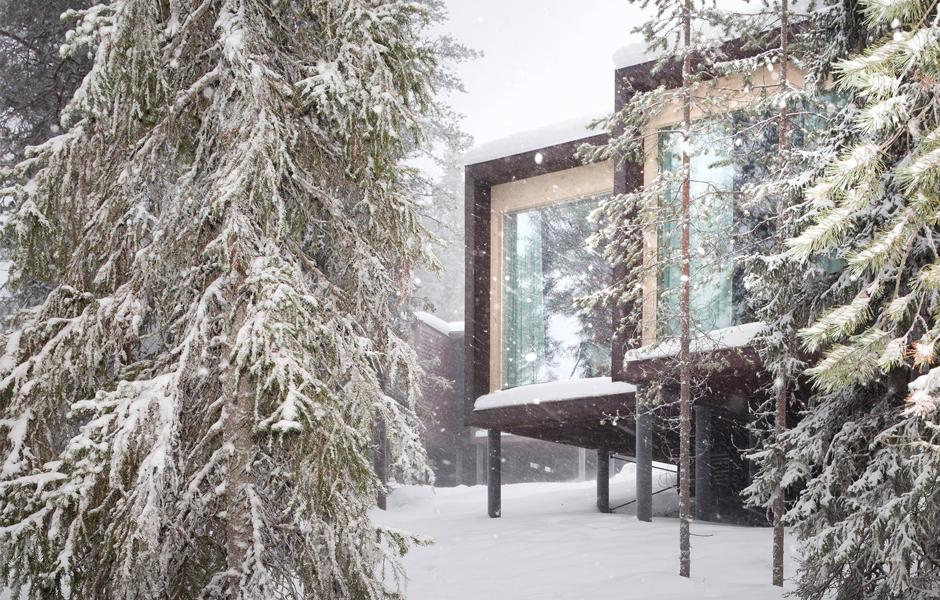 Arctic Treehouse Hotel Focus